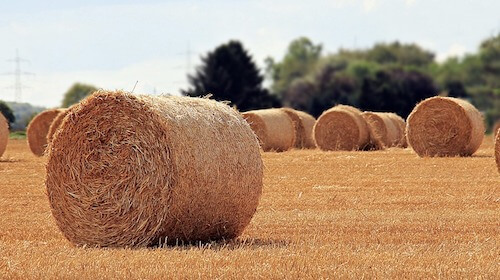 MADCAP Global Commodities Round Bale